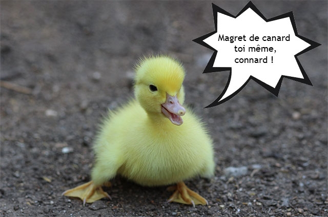 bébé canard veganisme